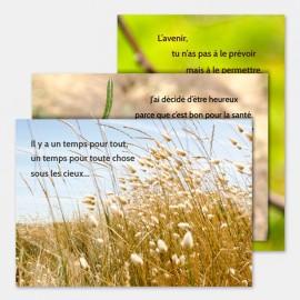 """3 cartes """"Nature"""" avec enveloppes"""