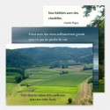 """3 cartes """"Horizon"""" + enveloppes"""